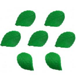 Garbusek mały-różne kolory