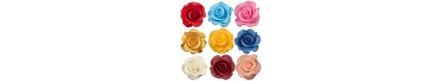 Róża L-gama kolorów