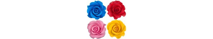 Róża XL-gama kolorów