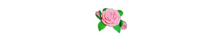 Róża R1-gama kolorów