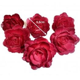 Róża chińska perłowa burgund 18 sztuk