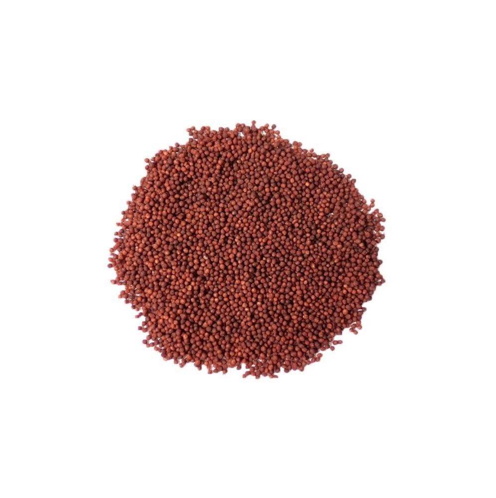 Maczek cukrowy brązowy 30g