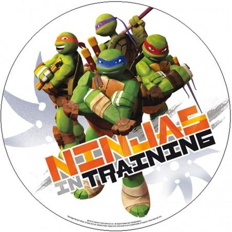 Opłatek na tort Żółwie Ninja-3-20cm