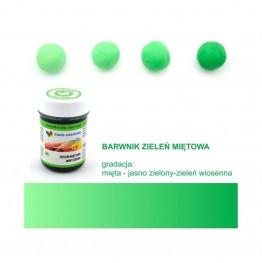 Barwnik Food Colours w żelu zieleń miętowa 35g